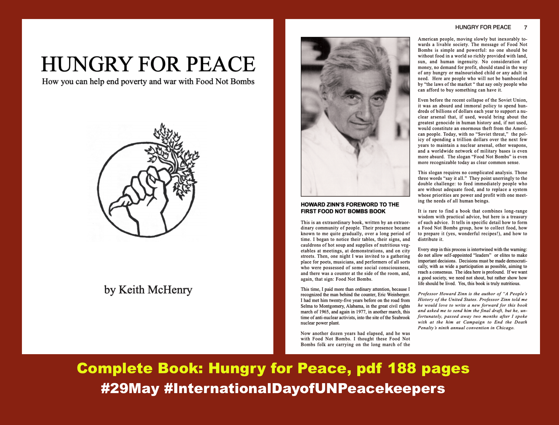 Book Hungry For Peace By Keith Mchenry Pdf 188 Page 29may Internationaldayofunpeacekeeper Bomb Howard Zinn Essays
