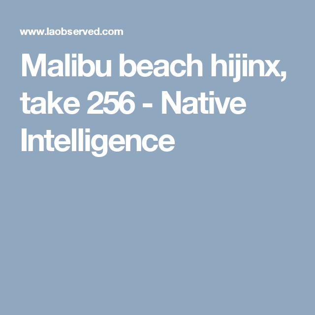 Malibu beach hijinx, take 256 - Native Intelligence