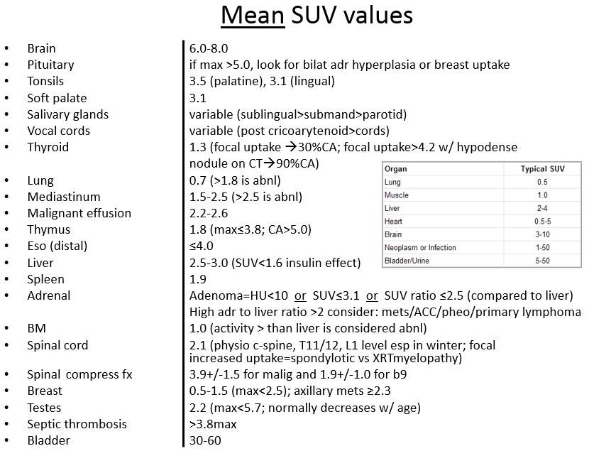 Mean Suv Values Fdg Pet Normal Reference Nuclear Medicine Soft