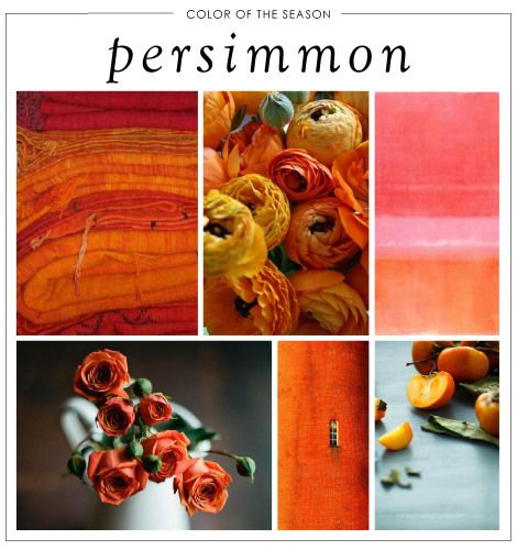 Our Color of the Season: Persimmon! Read more on the blog | Our Aesthetic by Rolling Greens