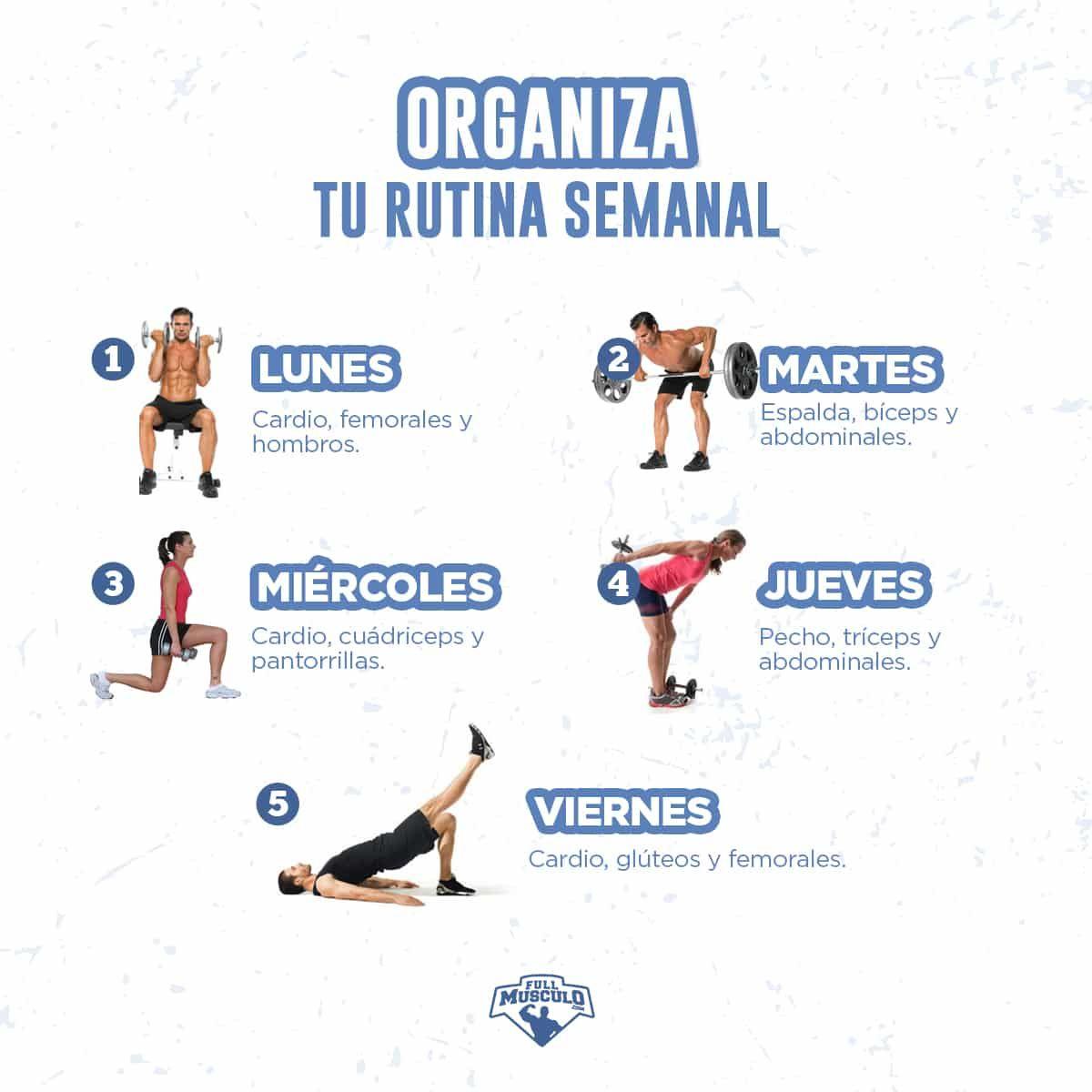 Guía Fitness Completa 2019 De Fat A Fit – FullMusculo.com