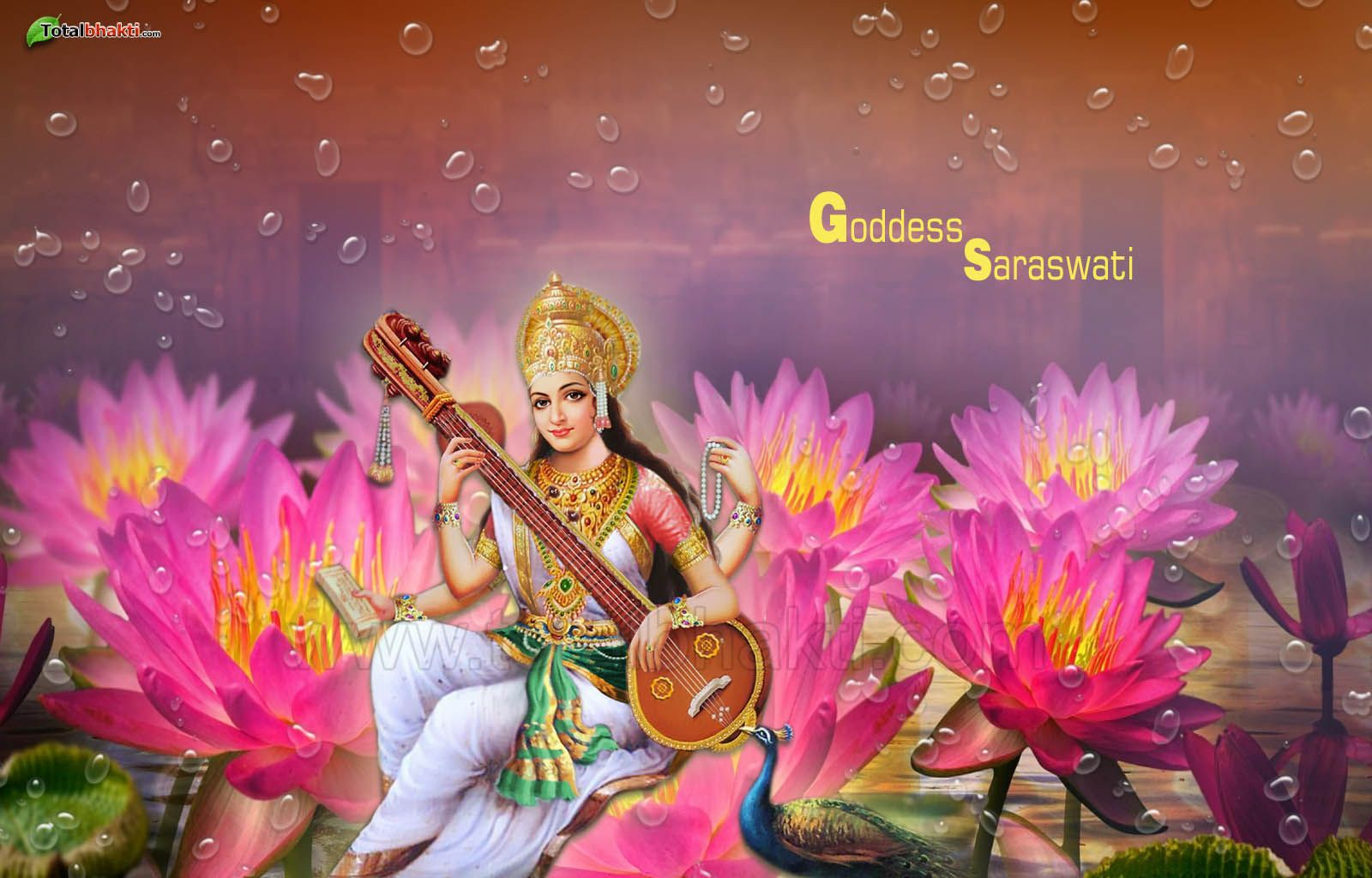 Beautiful Wallpaper Lord Saraswati - 0942c40099de41da534aa123560bd076  Photograph_30516.jpg