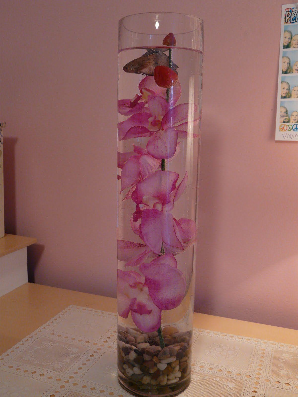 Long Tall Glass Vase For Fish Tall Glass Vases Glass Vase Vase
