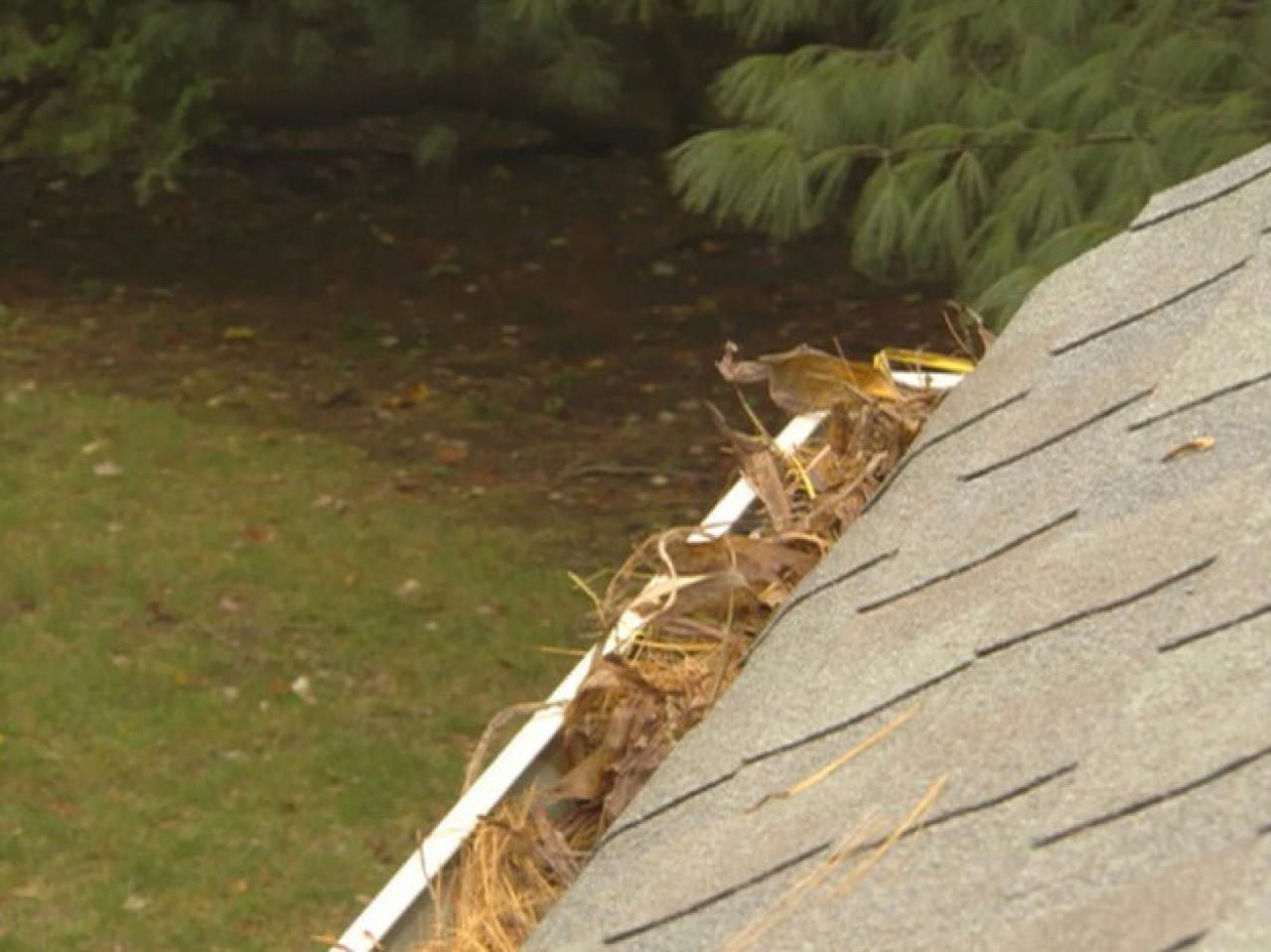 Top 10 Roofing Tips Diy roofing, Cool roof