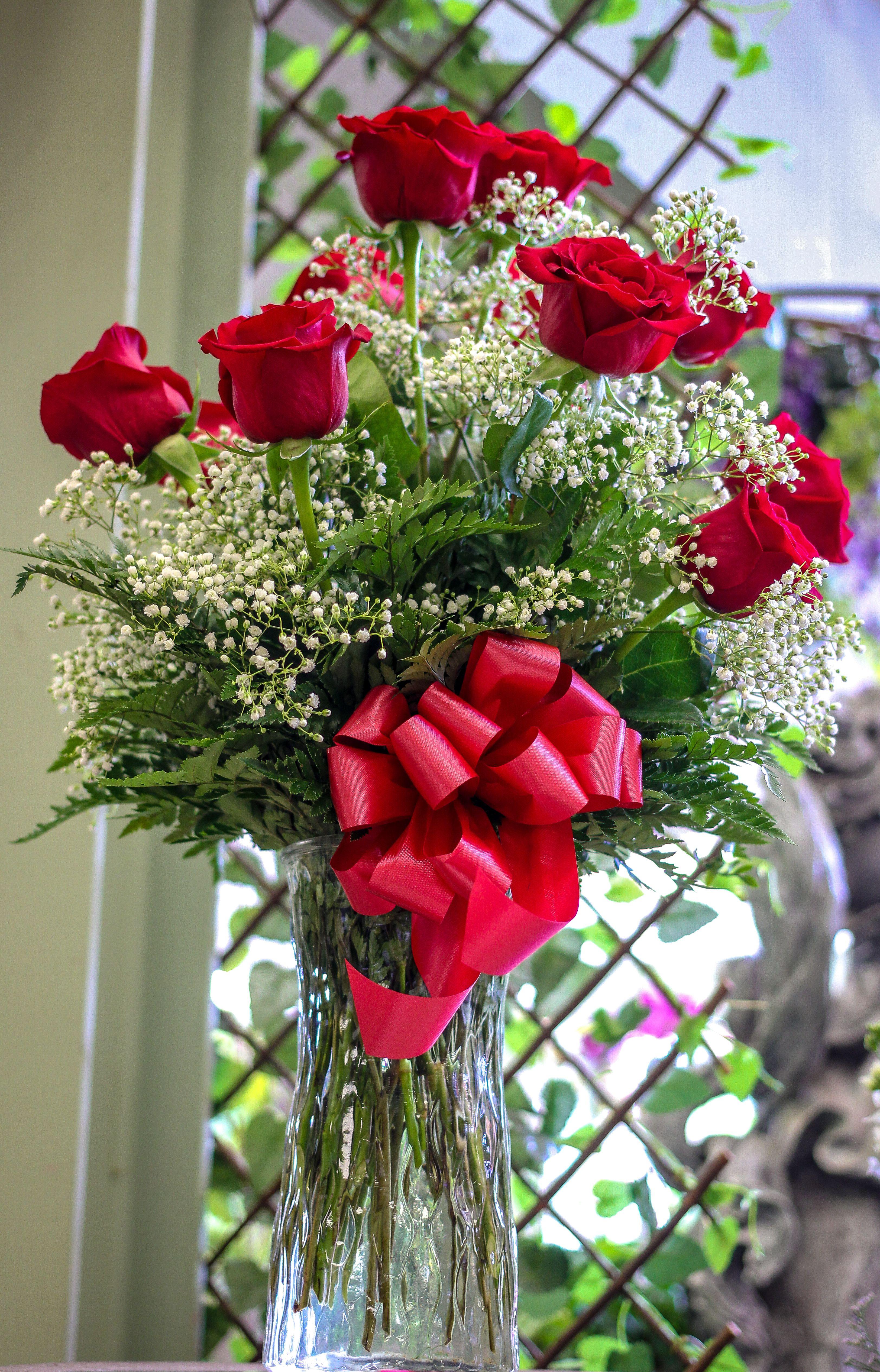 1 Dozen Roses Red Flower