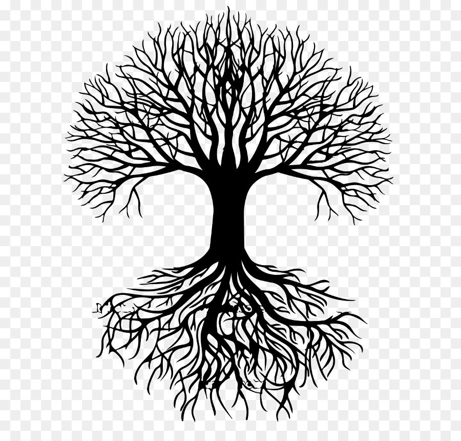 Tree Silhouette Root Clip Art Vitality Clipart Png Is About Is About Symmetry Monochrome Photography A Tree Silhouette Silhouette Clip Art White Flower Png