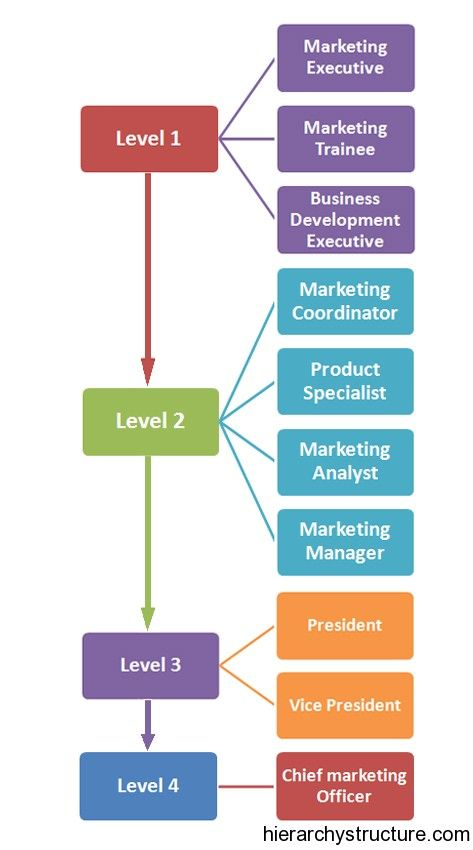 Marketing Career Hierarchy | Career Hierarchy | Pinterest