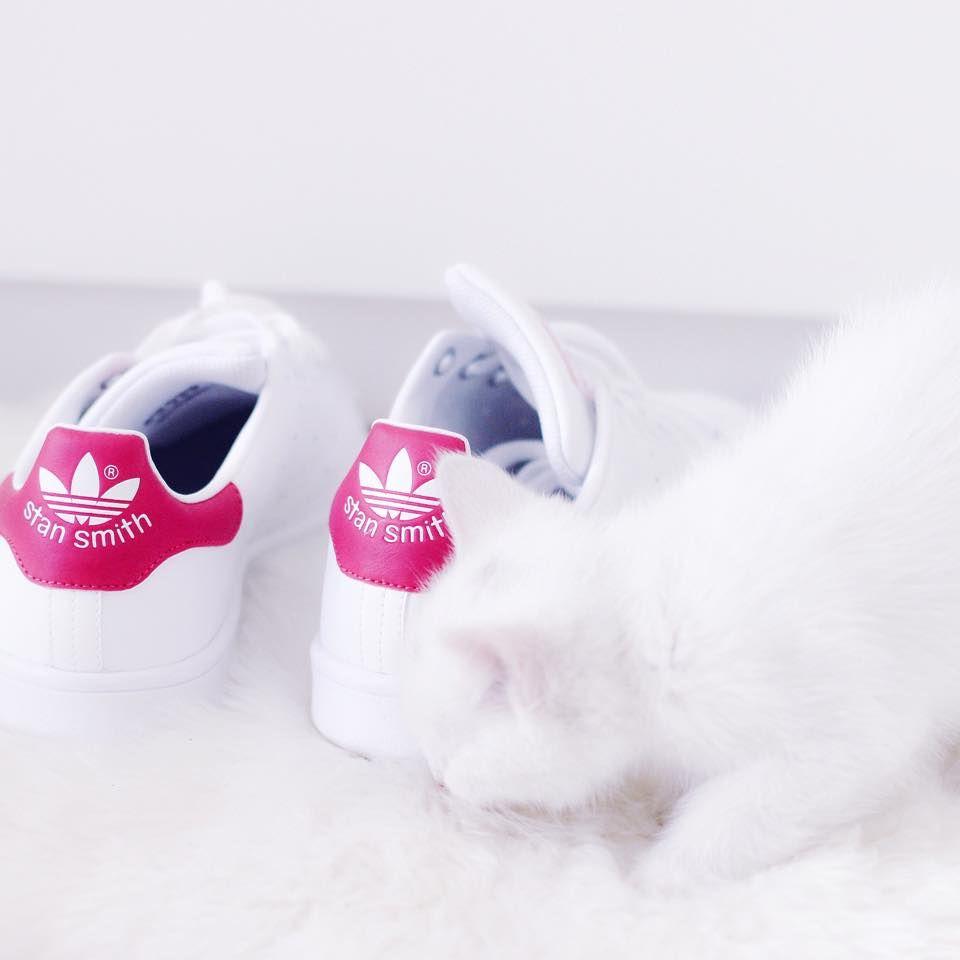 adidas stan smith prix maroc