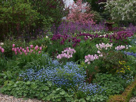 Garten Von Elisabeth Imig Und Silke Imig Gerold In 47551 Bedburg Hau Beautiful Flowers Garden Beautiful Gardens Garten