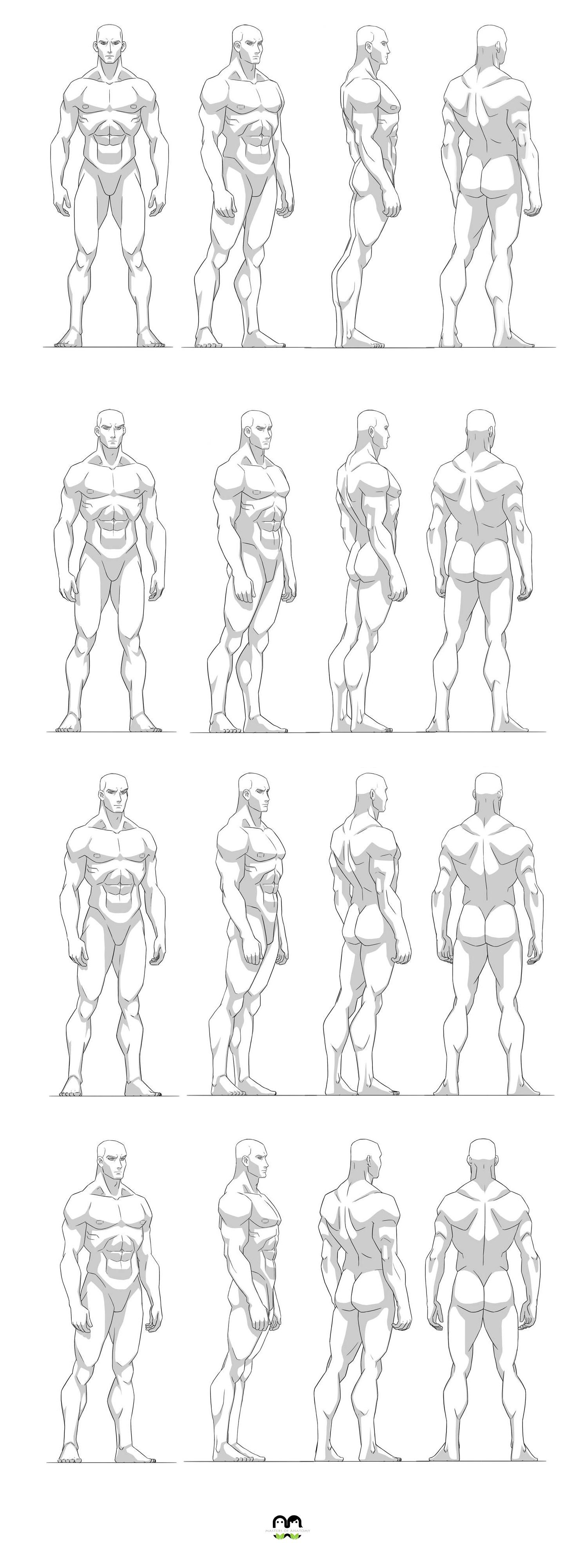 Blueprin Masculina bombada | Dibujo humano | Pinterest | Anatomía ...