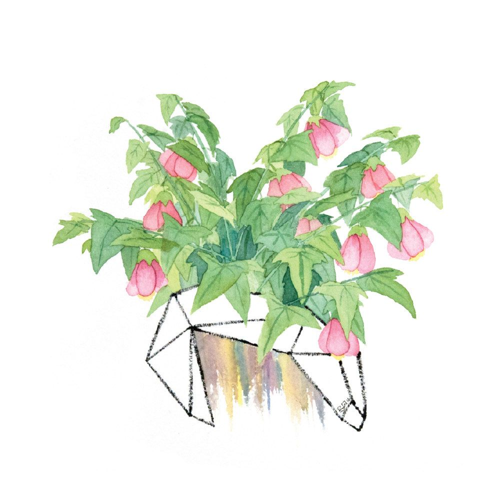 Hot Pink Flowers Watercolor Painting Modern Geometric Floral