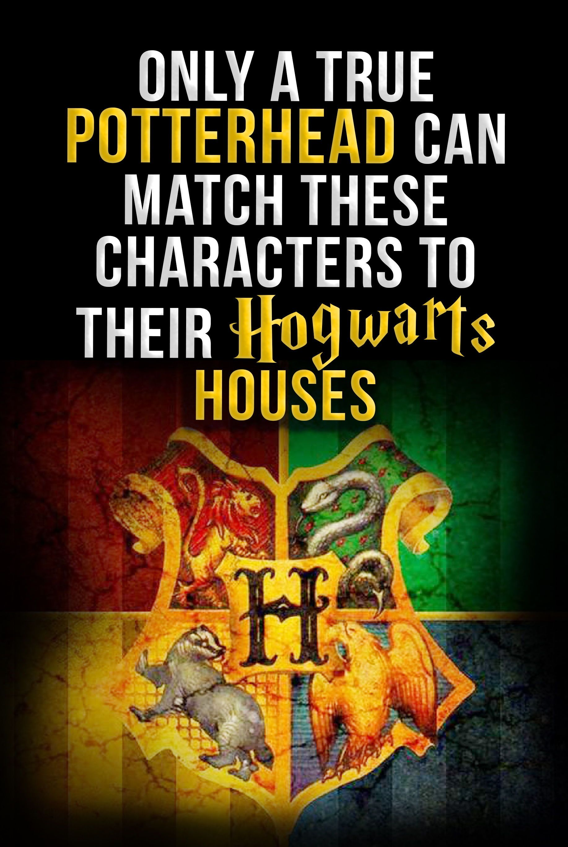 Only A True Potterhead Can Match These Characters To Their Hogwarts Houses