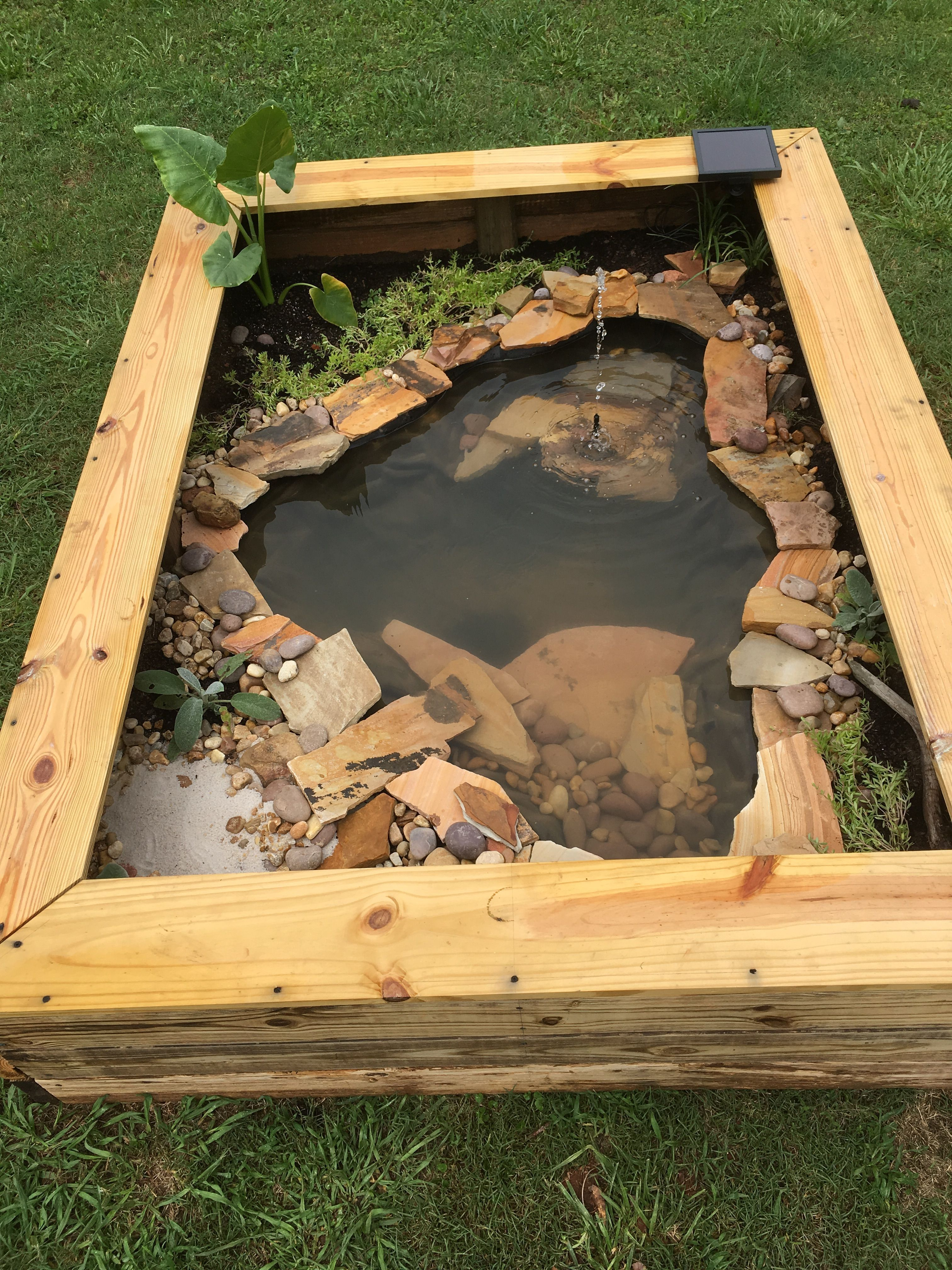 Our New Diy Above Ground Pond For Bella The Turtle Ponds