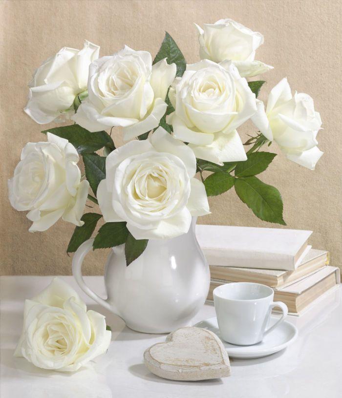 Пожелания с добрым утром женщине в картинках с белыми розами, открыток броненосцы
