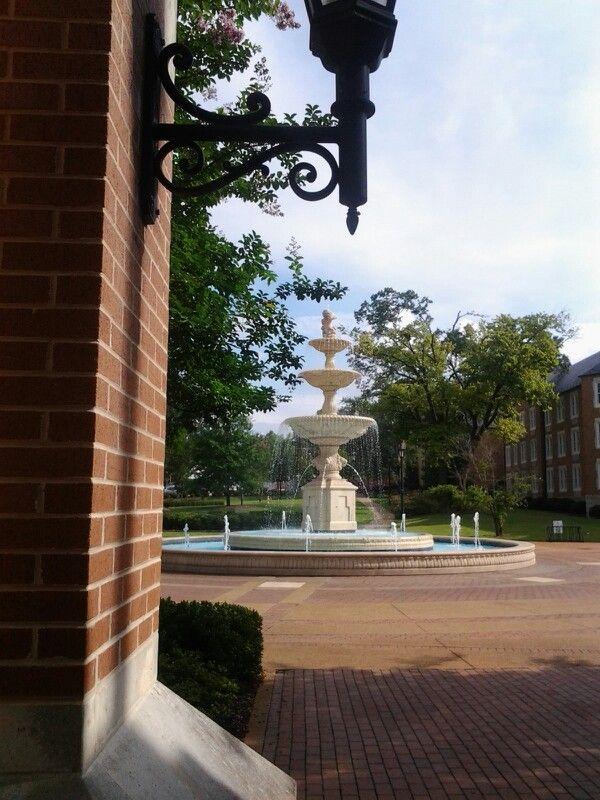 University Of North Alabama Sweet Home Alabama Florence Alabama