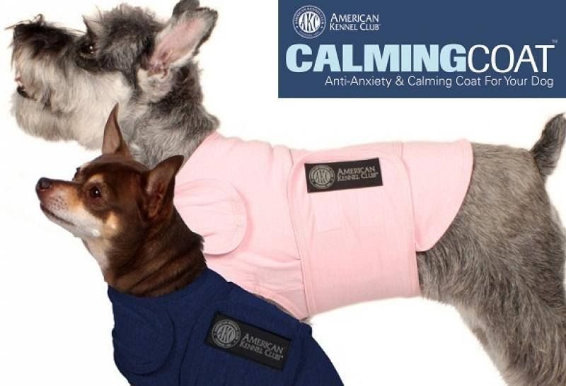 Akc calming coat american kennel club your dog akc