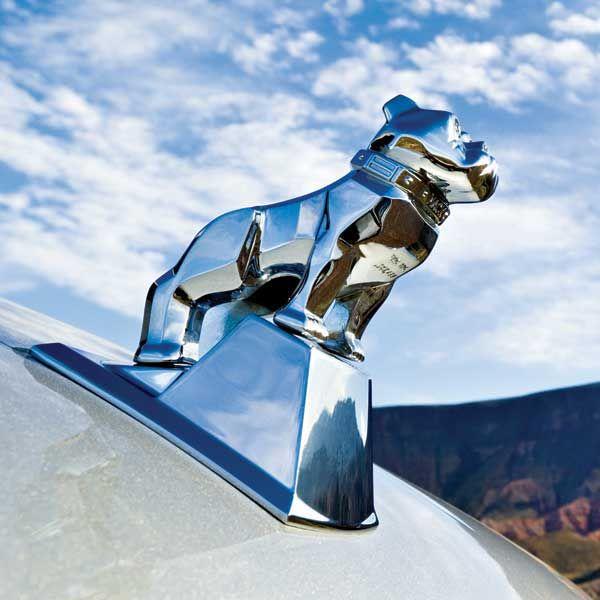 Chrome Large Mack Bulldog Hood Ornament Mack Trucks Hood