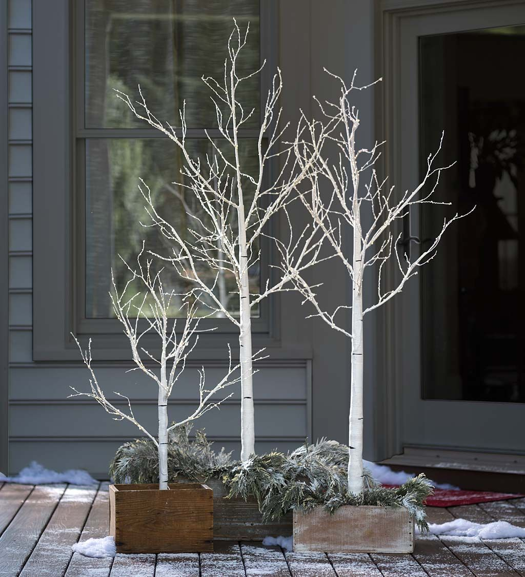 Indoor Outdoor Birch Tree With Micro Lights Create An Elegant