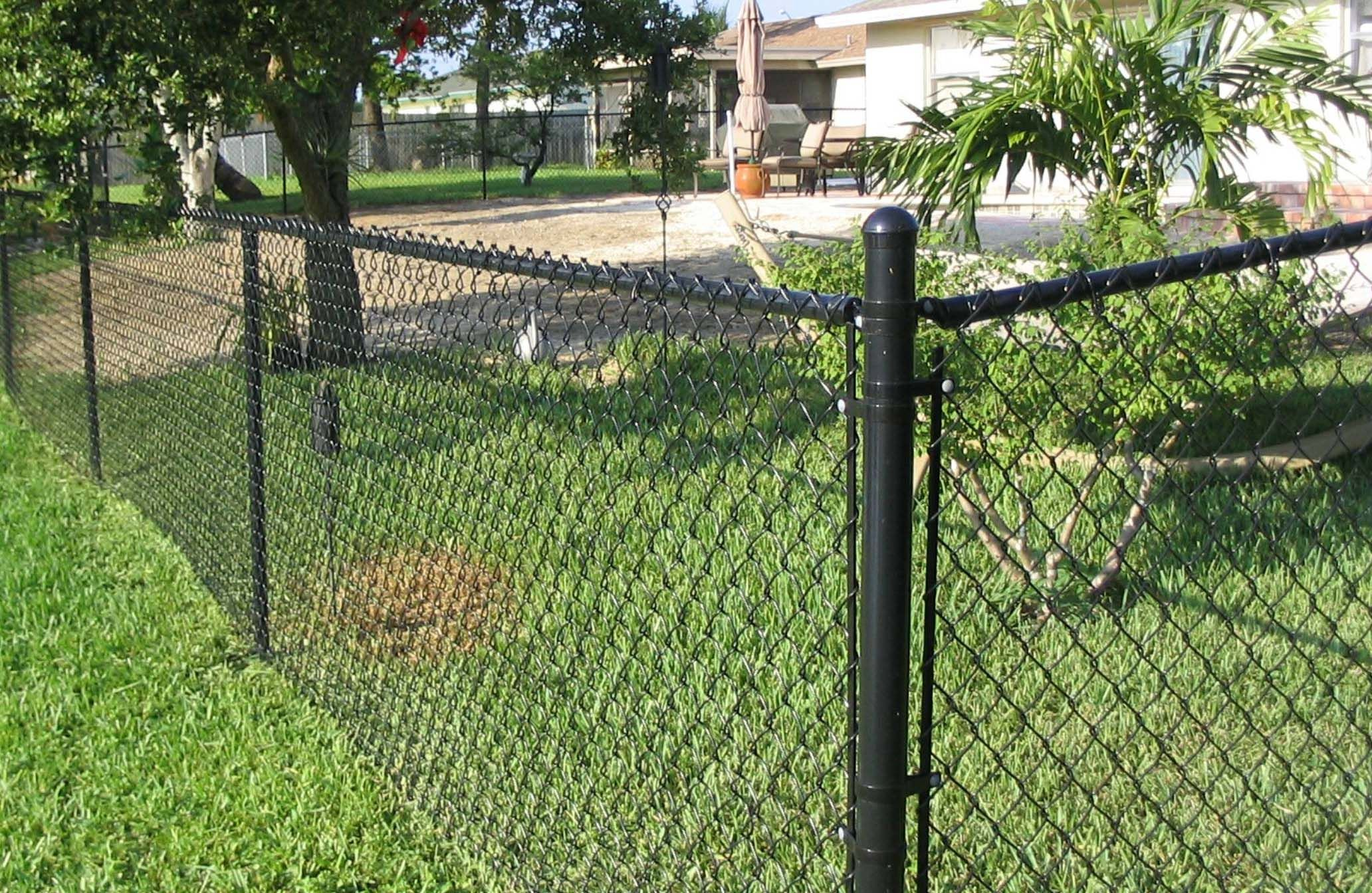 Chain Link Fence Buyers Guide Black Chain Link Fence Chain Link Fence Backyard Fences