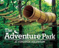 Ropes Course At Aquarium Virginia Beach Google Search