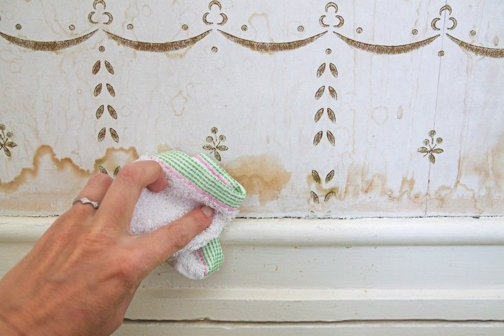 How To Clean Water Stains From Wall Paper Step 5 Remodelista