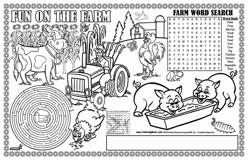 fun on the farm colorable placemats  kids coloring books
