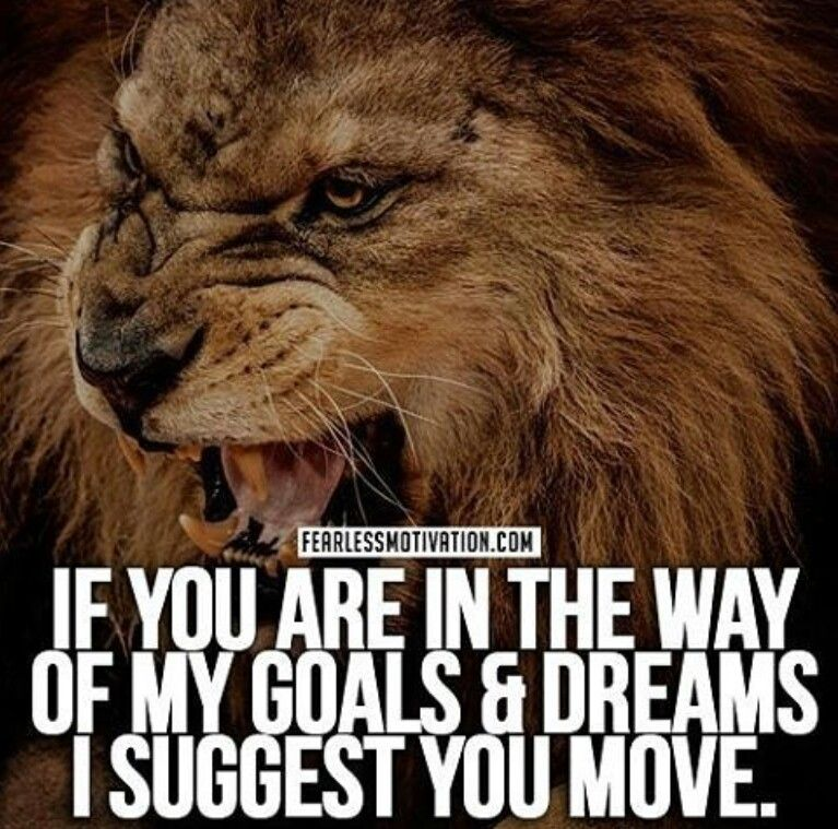 Stay Out Of My Way Lion Quotes Warrior Quotes Motivational Quotes For Life