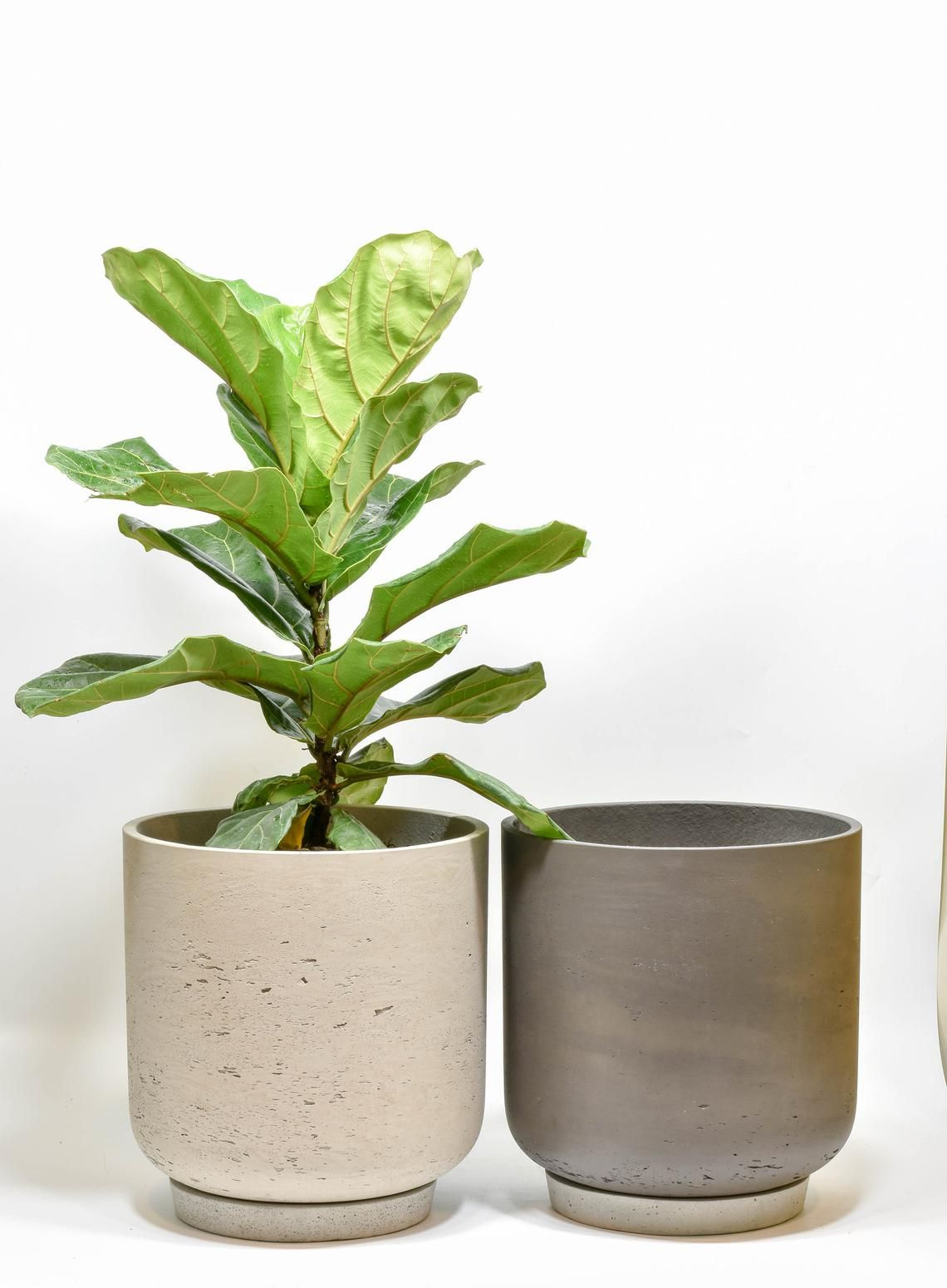 Large Planter Pot Large Outdoor Planter Indoor Planters With