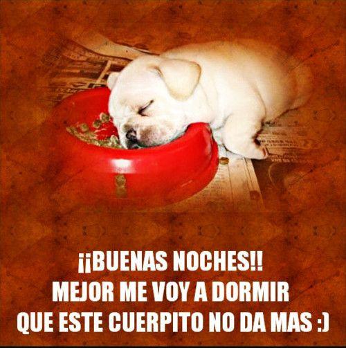 49 Imagenes Divertidas Con Frases De Buenas Noches Para Whatsapp