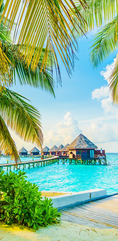 Malediven Urlaub Tipps Gunstige Angebote Malediven Urlaub Malediven Urlaub