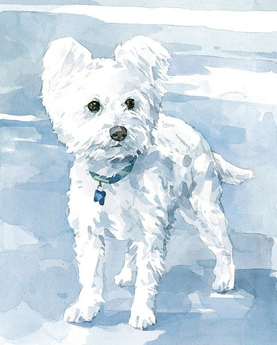 Custom White Dog Pet Portrait Watercolor Painting By Studiotuesday
