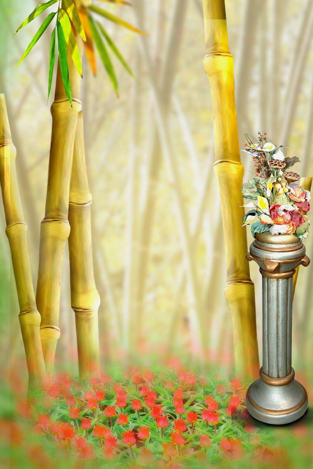 Guys, for your lovely New Wedding Studio Backgrounds For ... Wedding Studio Background Wallpaper