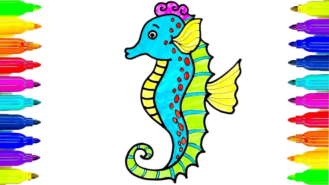seahorses drawing and coloring pages learning colors for