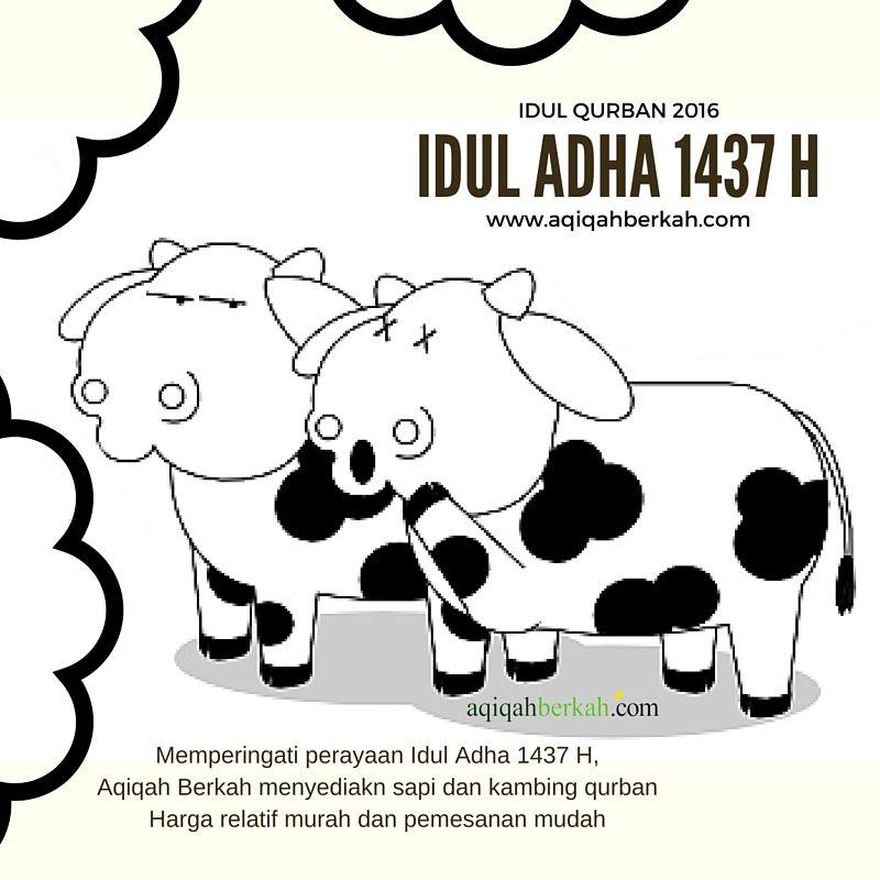 Idul Qurban 2016 Http Www Aqiqahberkah Com Idul Qurban 2016 Idul