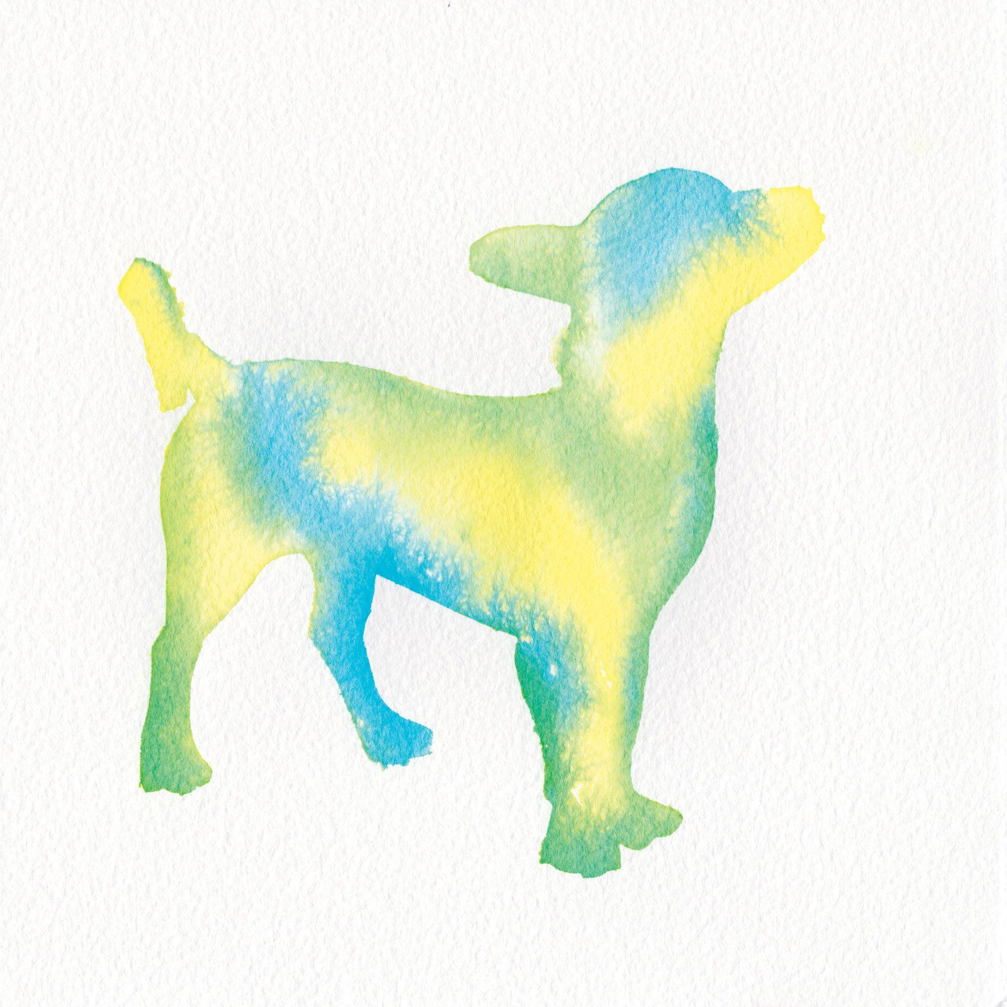 BRUCEY by Elaine Fukuda Dog art, Dog portraits, Dog poses