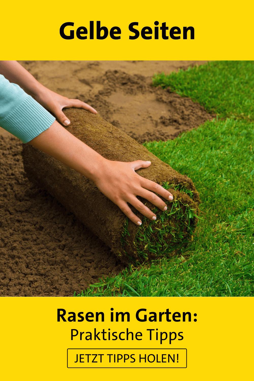 Rasen Im Heimischen Harten Fragen Und Antworten In 2021 Rasenpflege Im Fruhjahr Rasenkanten Ideen Rasen