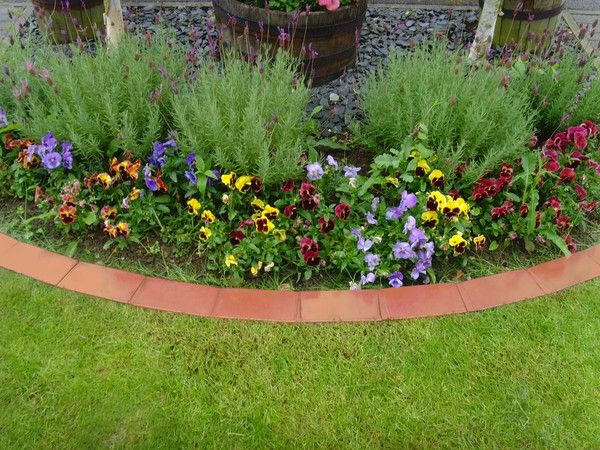 terracota lawn edging ideas