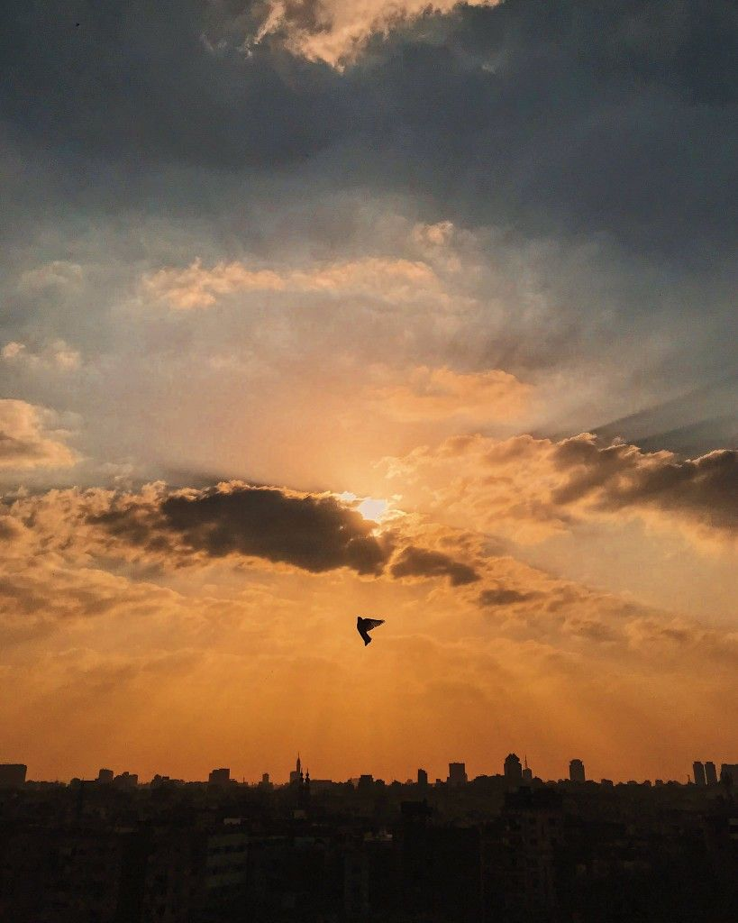 HOPE if it were a picture. Don't give up keep soaring. #Clouds #Sunset #Sky #Dove #Scenes
