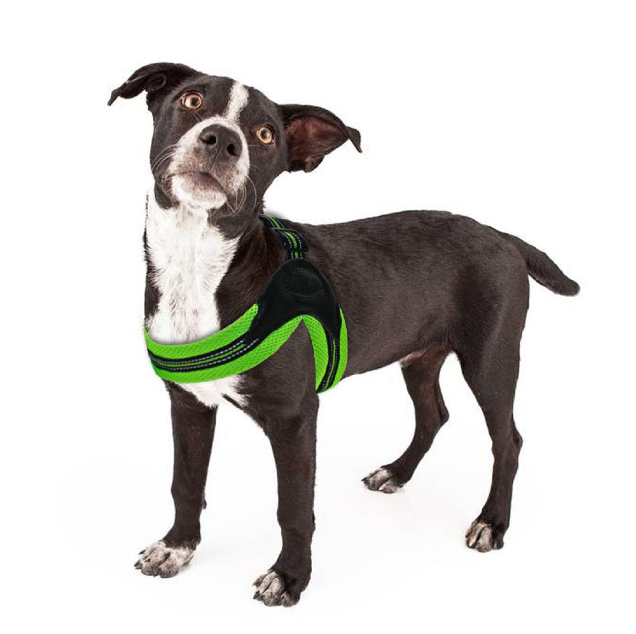 Dog Harness No Pull Reflective For Medium Size Dog Dog