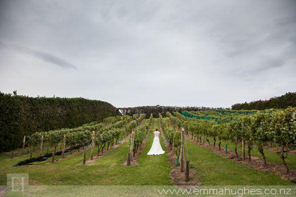 073_mudbrick vineyard wedding