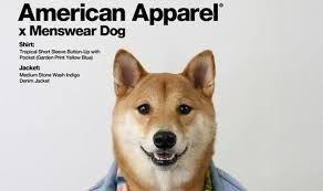 american apparel - Google 検索