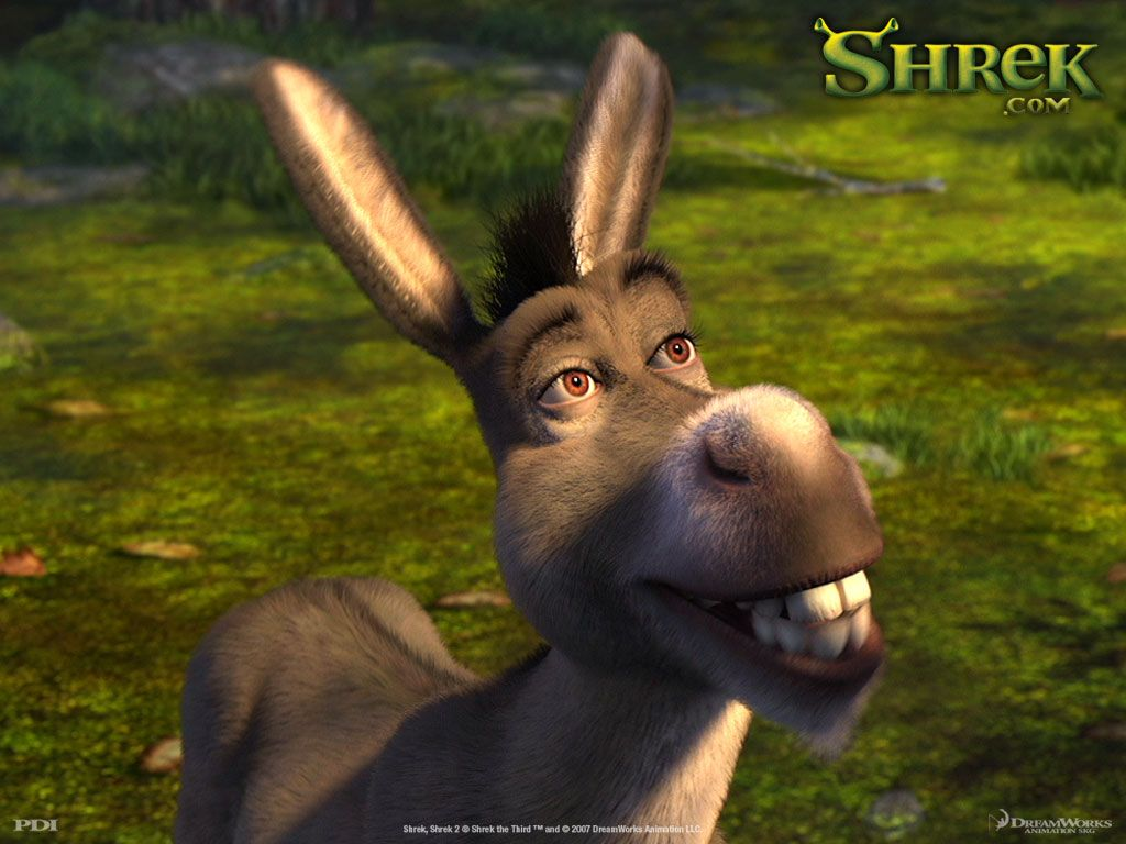 Image result for donkey shrek
