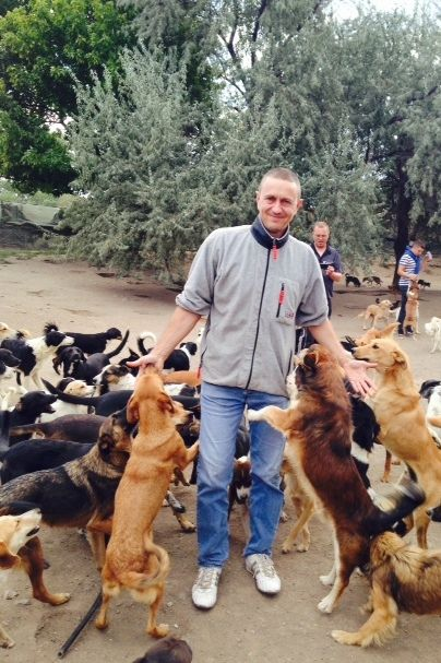 Dog Catchers To Swarm Beloved Free Roaming Sanctuary On Christmas Dogs Network For Good Save Animals