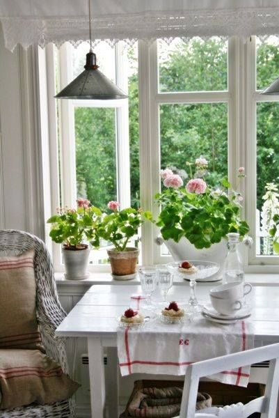 Geraniums On The Window Ledge And Linen Feedsack Upholstery