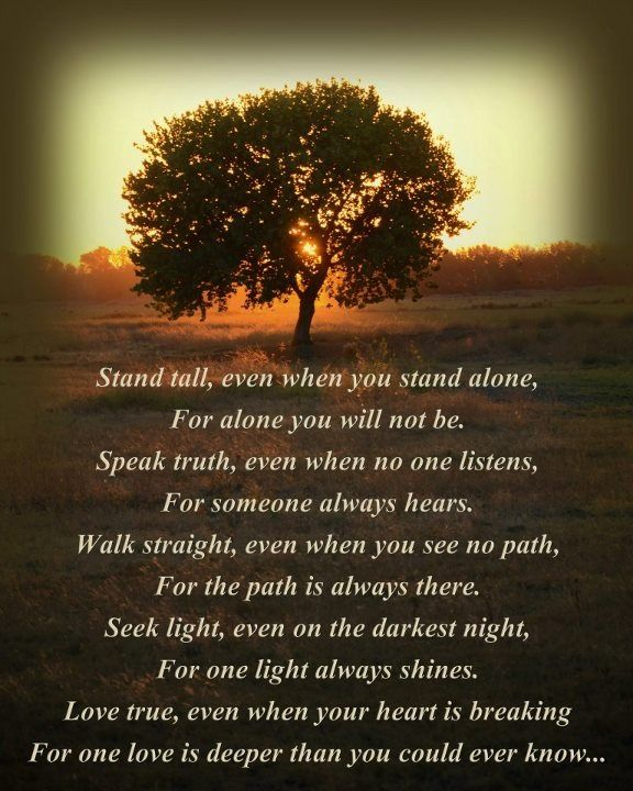 Birthday Quotes Christian Inspirational: Stand Tall Photo By Myle Collins Poem Original By Myle