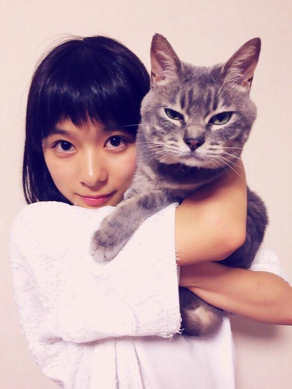 ねこに勝った芳根京子