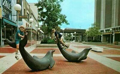 Decatur Il Mall >> Dolphins In Landmark Mall Decatur Illinois Decatur Past