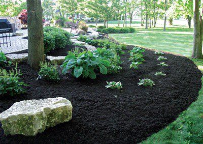 Black Mulch Landscaping Around Trees