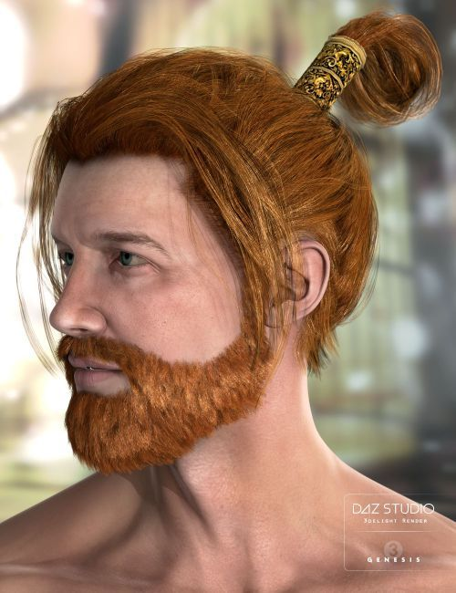 Leandros Hair And Beard 3d Models For Poser And Daz Studio Daz