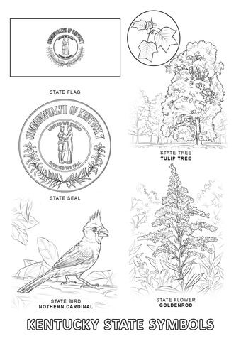 Kentucky State Symbols Coloring Page From Kentucky Category